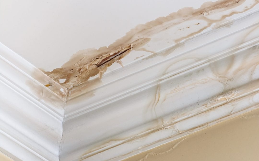 moisture problems in the home can lead to water stains on the ceiling